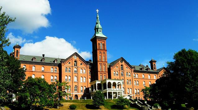 Cao đẳng Mount Saint Vincent