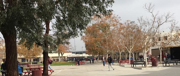 Trường Trung học công lập Chaffey Joint Union School District - Bang California